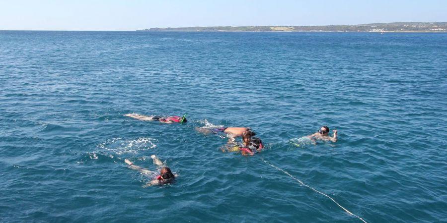 外海定點浮潛